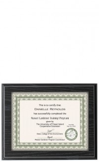 Recessed Certificate Plaque, Black