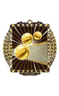 Lynx Sport Medal, Volleyball