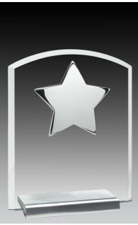 "Glass Plaque w/Silver Star 6"""