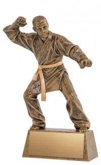 Resin Pinnacle Martial Arts, 8.5""