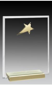 "Glass Plaque w/Gold Star 7"""