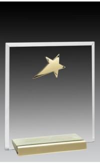 "Glass Plaque w/Gold Star 6"""