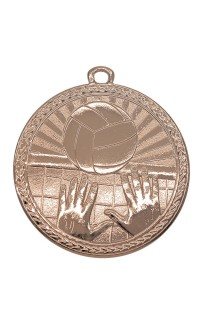 "Medal Triumph 2"" Dia. Volleyball, Antique Bronze"