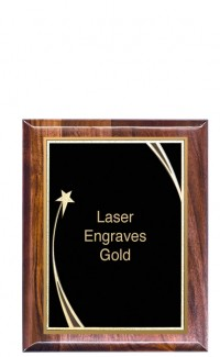 """Shooting Star Series Plaque with Plate, 9"""" x 12"""""""