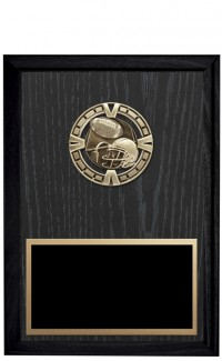 """Varsity Series Economy Plaques, 6""""x8"""""""