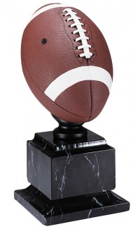 """Resin Football Full Colour with Base, 14"""""""