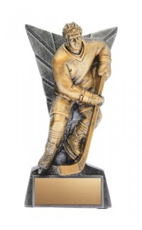 "Hockey Male Delta Resin 7.25"", AS/AG"